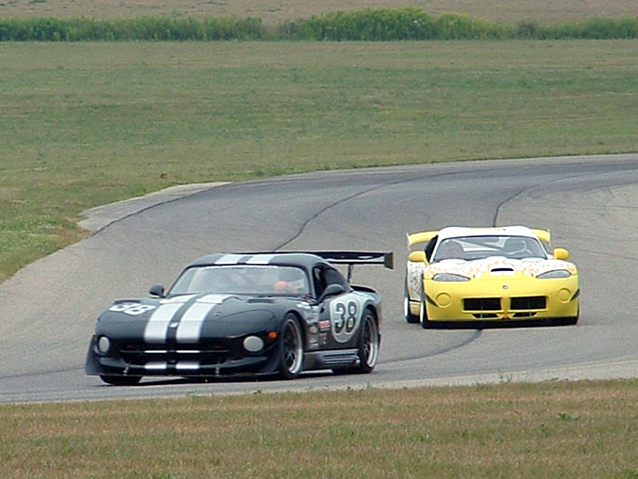 pair-of-vipers